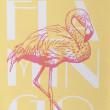 artikelbild_flamingo